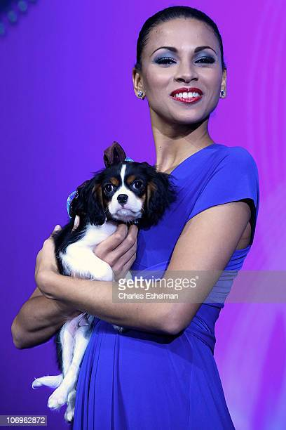 King Cavalier puppy auctioned at the 13th Annual Collaborating for a Cure dinner and auction at the Park Avenue Armory on November 18 2010 in New...