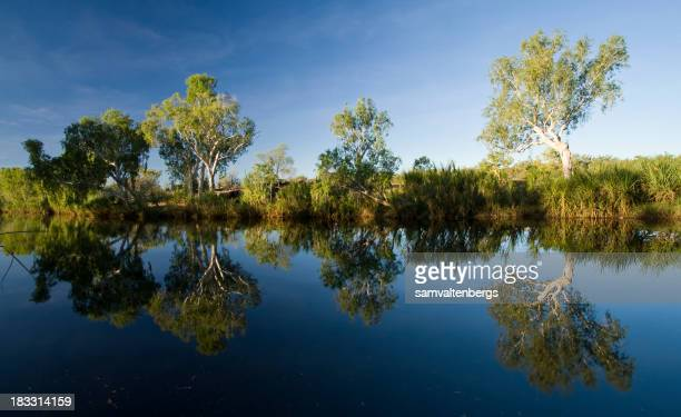 King Edward River Reflections