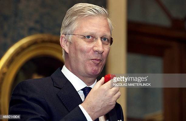 King Philippe Filip of Belgium tastes a strawberry during a meeting with the ducal company 'de Ghesellen van de aardbei' from Hoogstraten to offer...