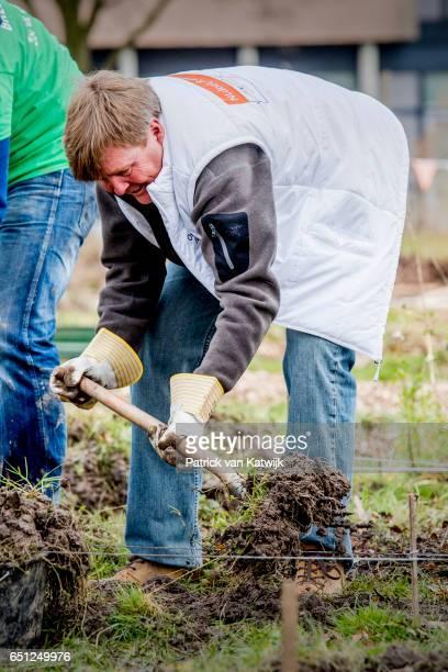 King WillemAlexander of the Netherlands volunteering for NL Doet in the neighborhood garden on March 08 2017 in Breda Netherlands NL Doet is a...