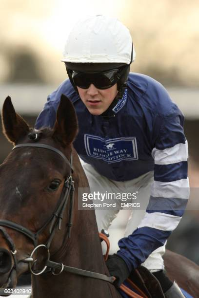 King's Alchemist ridden by James Davies before The Bet totepool On All UK Racing Juvenile Novices' Hurdle Race
