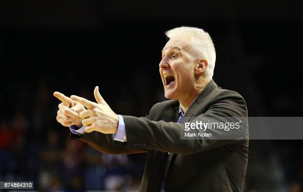 Kings coach Andrew Gaze reacts during the round seven NBL match between the Illawarra Hawks and the Sydney Kings at Wollongong Entertainment Centre...