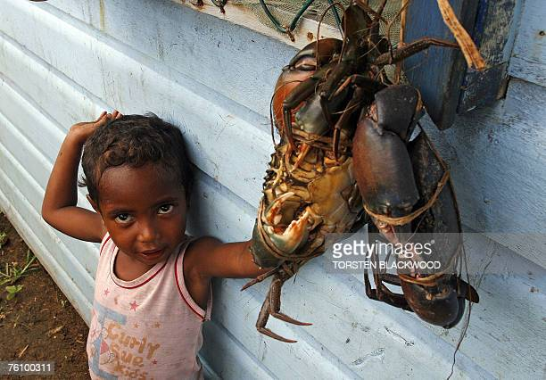 A Kiriwina Islander child admires a bundle of live crabs bound for the cooking pot in the Trobriand Islands of Papua New Guinea 13 August 2007...
