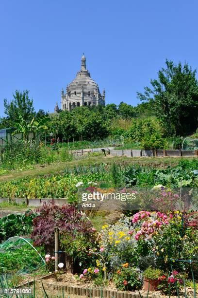Kitchen gardens in Lisieux In the background the Basilica of St Therese of Lisieux