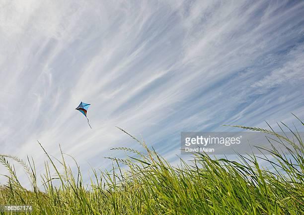 Kite flying above windswept glass