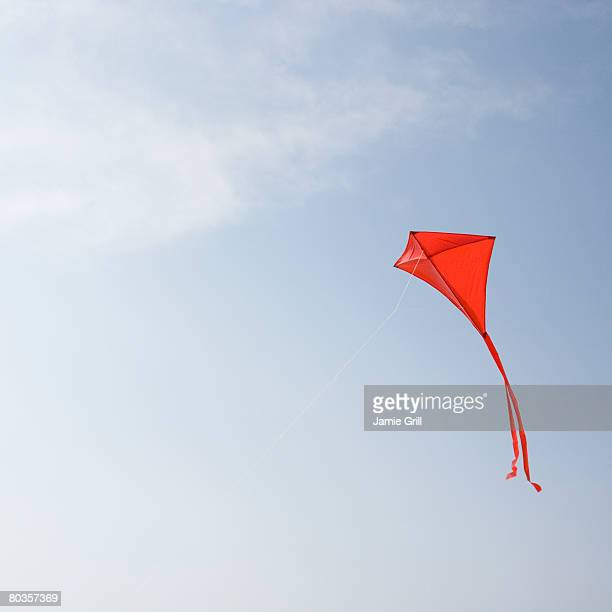 Kite flying in air
