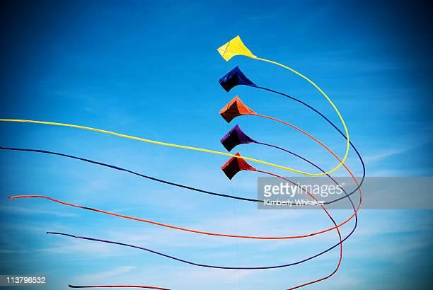 kite rainbow