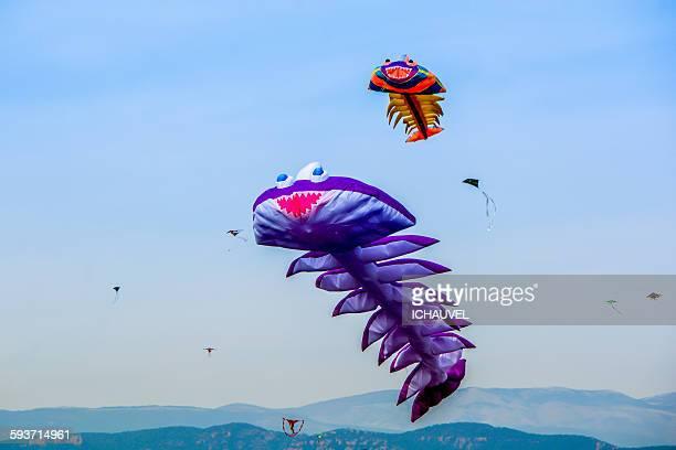 Kites festival