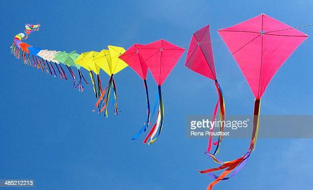 70 kites on a single line