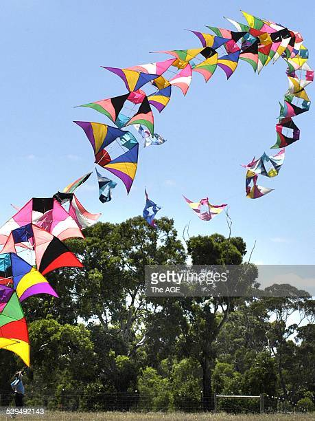 Kites rise on the breeze at Royal Park to celebrate Melbourne's 25 year relationship with its sister city in China Tianjin 20th January 2005 THE AGE...