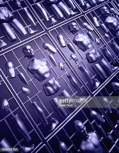 Kits of model human body parts, close-up (Digital Composite)