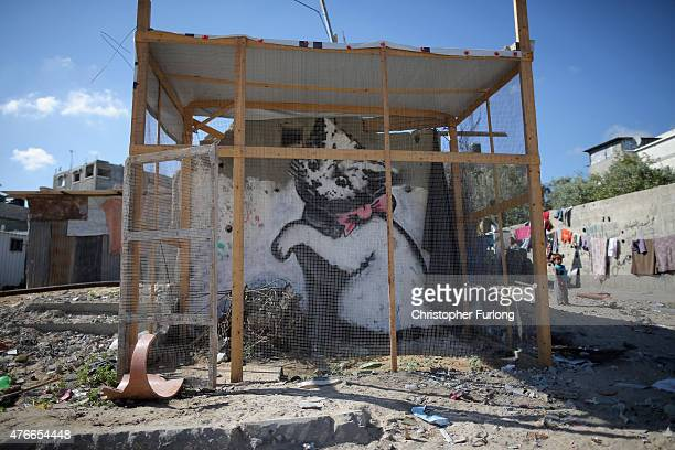 A kitten by British graffiti artist Banksy is protected by fencing as mounds of rubble and destroyed buildings continue to scar the landscape of Gaza...