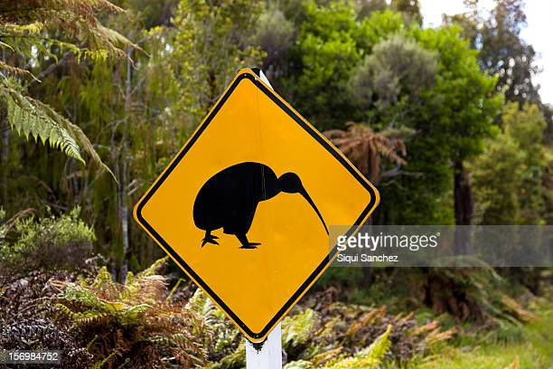 kiwi signal