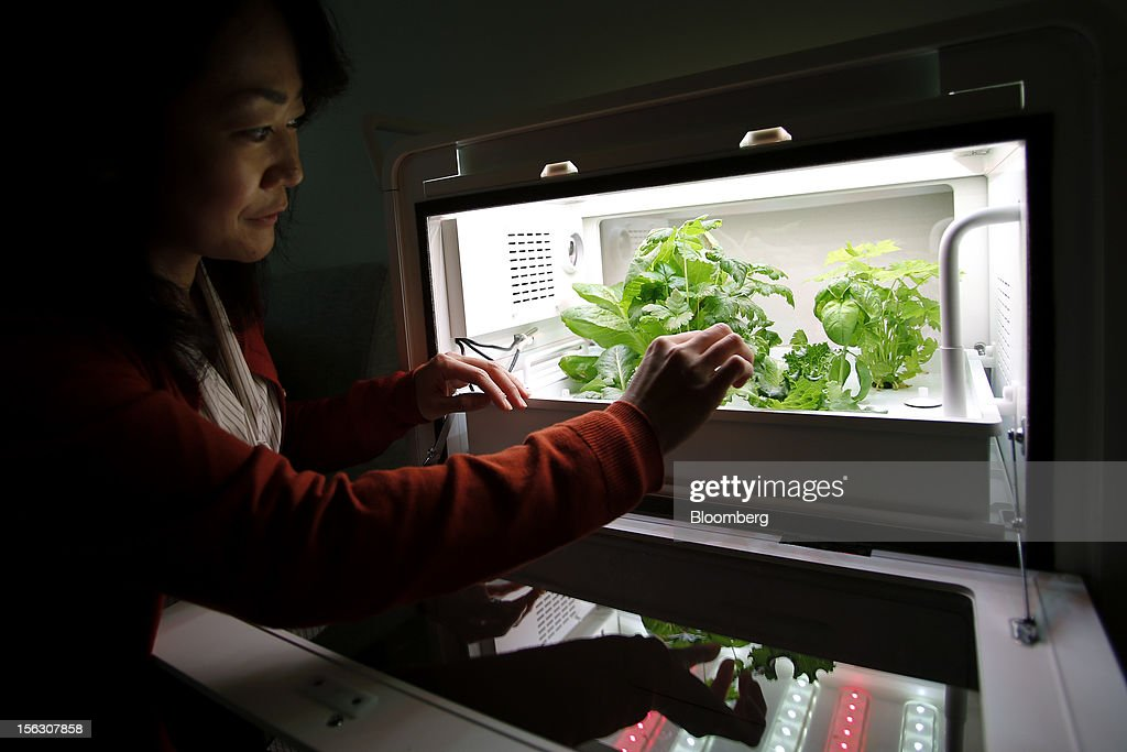 Kiyomi Ogawa, 38, demonstrates using a prototype of a home-use mini 'plant factory' manufactured by Panasonic Corp. at her house in Kashiwa City, Chiba Prefecture, Japan, on Monday, Nov. 12, 2012. Japanese consumers are closing their wallets as the economy's outlook darkens, making it harder for Prime Minister Yoshihiko Noda to stave off the nation's third recession in four years. Photographer: Kiyoshi Ota/Bloomberg via Getty Images