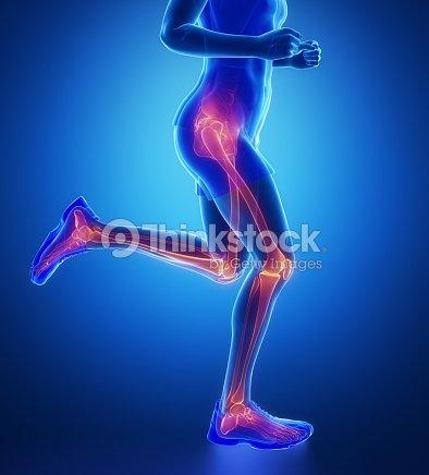 Knee, hip, ankle - running man leg scan in blue : Stock Photo