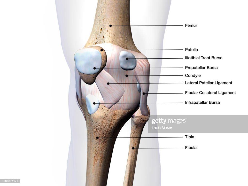 Behandlung von arthrose von 1 2 grad 1-2, dies ist der...