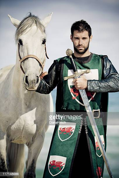 knight an white horse