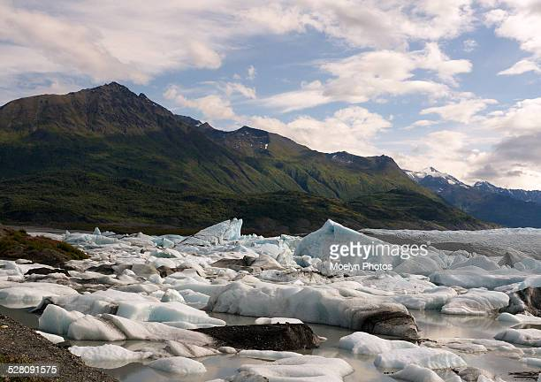 Knik River-Mountains and Icebergs
