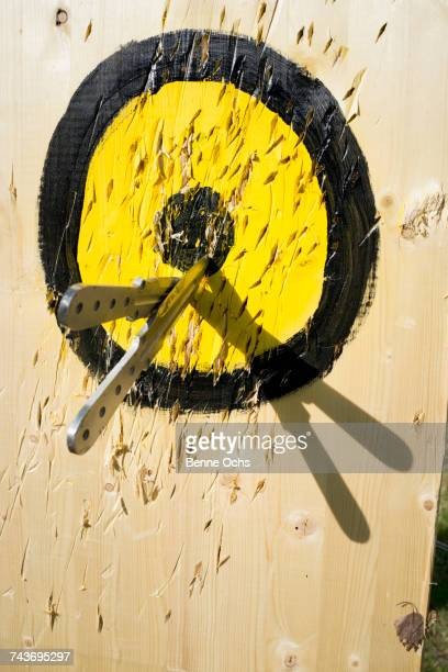 Knives stuck in wooden bulls-eye on sunny day