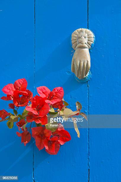Knocker and flowers on blue door, Sidi Bou Said