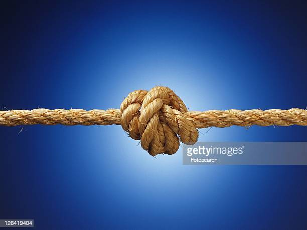 Knot in a rope, close up
