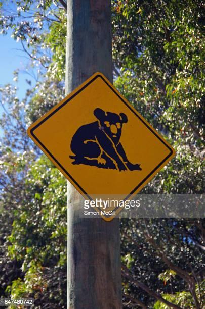 Koala crossing warning road sign, Port Macquarie, New South Wales, Australia
