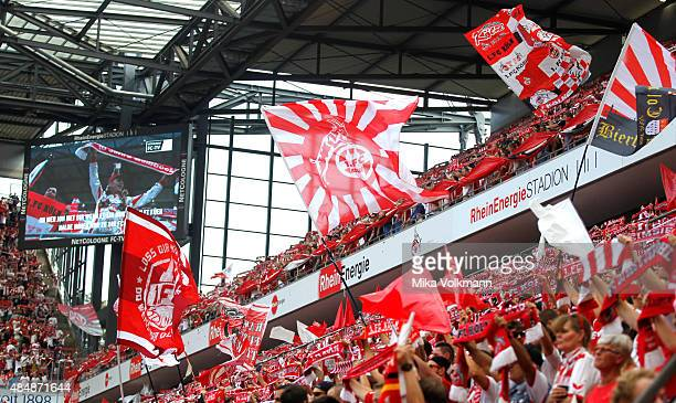 Koeln fans wave their flags during the Bundesliga match between 1 FC Koeln and VfL Wolfsburg at RheinEnergieStadion on August 22 2015 in Cologne...