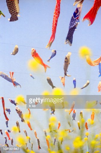Japanese fish kites stock photos and pictures getty images for Japanese flag koi
