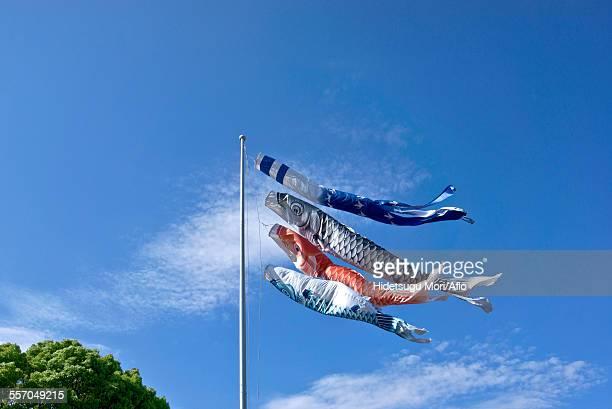 Koinobori Flying Carps