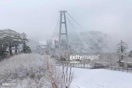 Kokonoe 'Yume' Otsurihashi suspension bridge : Stock Photo