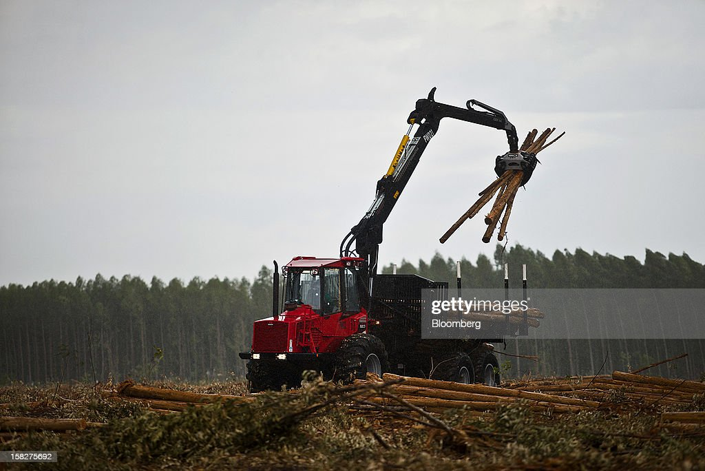 A Komatsu Ltd. machine gathers harvested 7 year old eucalyptuses on a farm leased by Eldorado Celulose e Papel S.A in Andradina, Brazil, on Tuesday, Dec. 11, 2012. Eldorado Celulose e Papel S.A is finishing construction on a pulp processing plant that is expected to be the one of the world's largest single-line pulp plants when it reaches peak production. Photographer: Dado Galdieri/Bloomberg via Getty Images