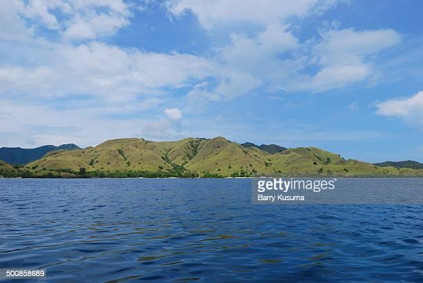 Komodo island Flores
