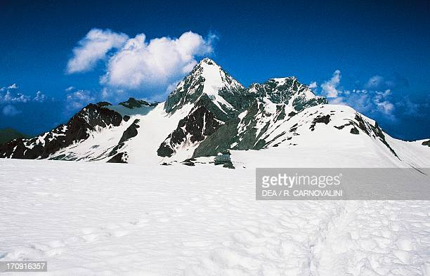 Konigsspitze in the Ortler Alps Stelvio National Park Lombardy Italy