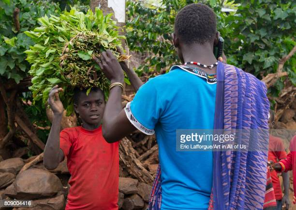 Konso tribe people collecting khat Omo valley Konso Ethiopia on June 14 2017 in Konso Ethiopia
