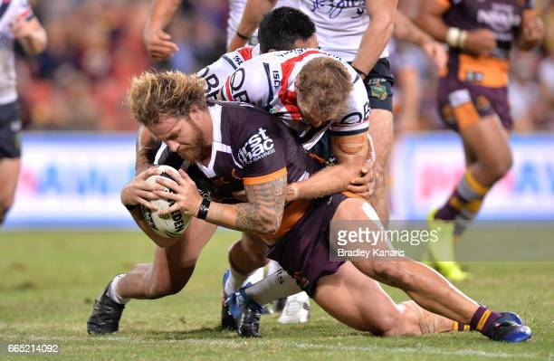 Korbin Sims of the Broncos dives over to score a try during the round six NRL match between the Brisbane Broncos and the Sydney Roosters at Suncorp...