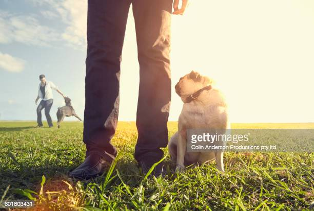 Korean man standing with dog in field