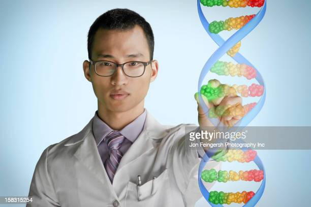 Korean scientist touching DNA model
