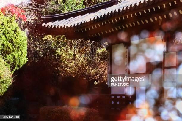 Korean traditional house fall image