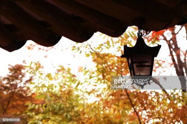 korean traditional house,autumn image