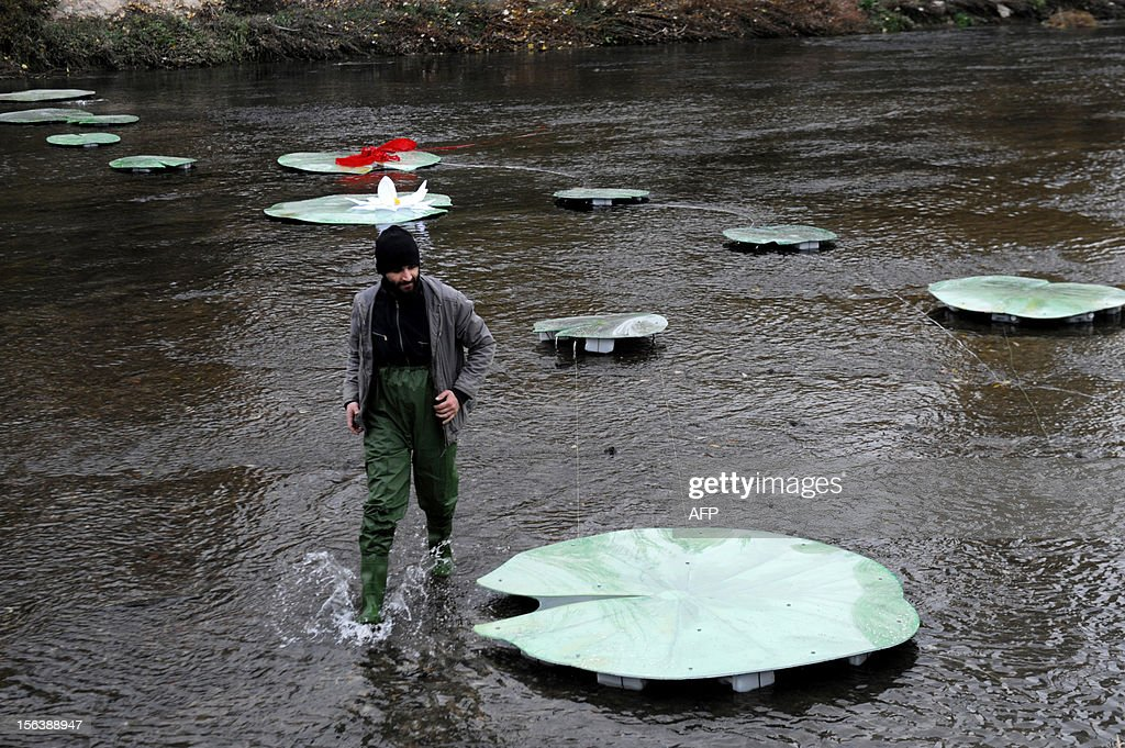 A Kosovo Albanian artist walks past a bridge made of water lilies accross the Ibar river in the ethnically divided flashpoint town of Mitrovica in protest at the real bridge being blocked, on November 14, 2012. The actual bridge linking the Albanian-populated south with the Serb-populated north of Mitrovica is closed off by a huge cement barricade, preventing any interaction between the two sides. Mitrovica in particular often the scene of violent clashes as local Serbs refuses to recognise the ethnic Albanian government in Pristina.