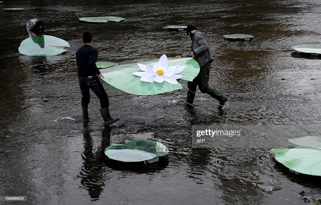 Kosovo Albanian artists set up a bridge made of water lilies accross the Ibar river in the ethnically divided flashpoint town of Mitrovica in protest at the real bridge being blocked, on November 14, 2012. The actual bridge linking the Albanian-populated south with the Serb-populated north of Mitrovica is closed off by a huge cement barricade, preventing any interaction between the two sides. Mitrovica in particular often the scene of violent clashes as local Serbs refuses to recognise the ethnic Albanian government in Pristina.