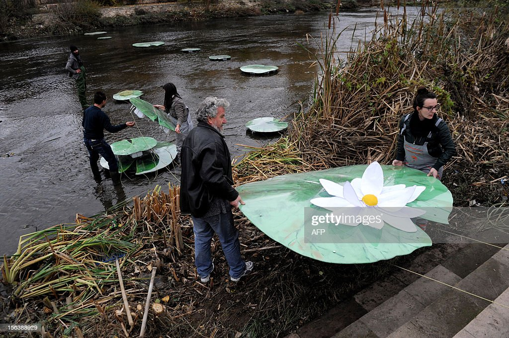Kosovo Albanian artists set up a bridge made of water lilies accross the Ibar river in the ethnically divided flashpoint town of Mitrovica in protest at the real bridge being blocked, on November 14, 2012. The actual bridge linking the Albanian-populated south with the Serb-populated north of Mitrovica is closed off by a huge cement barricade, preventing any interaction between the two sides. Mitrovica in particular often the scene of violent clashes as local Serbs refuses to recognise the ethnic Albanian government in Pristina. AFP PHOTO/ARMEND NIMANI