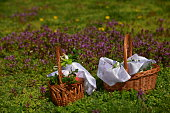 Easter baskets on a background of grass and flowers.