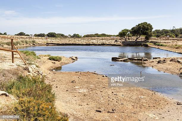 Kothon the basin in the archaeological ruins Mozia near Stagnone Marsala and Trapani Sicily Italy