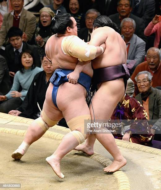 Kotoshogiku pushes out Endo during day twelve of the Grand Sumo New Year Tournament at Ryogoku Kokugikan on January 23 2014 in Tokyo Japan