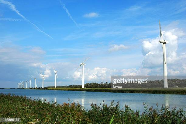Kreekrak Windmühle Farm, Provinz Zeeland, Niederlande.