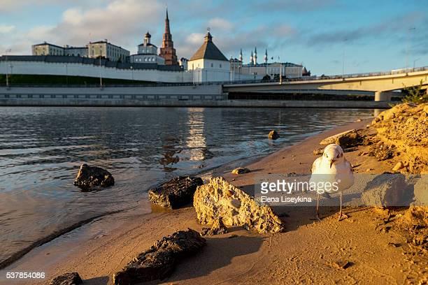 Kremlin in Kazan town. Russia