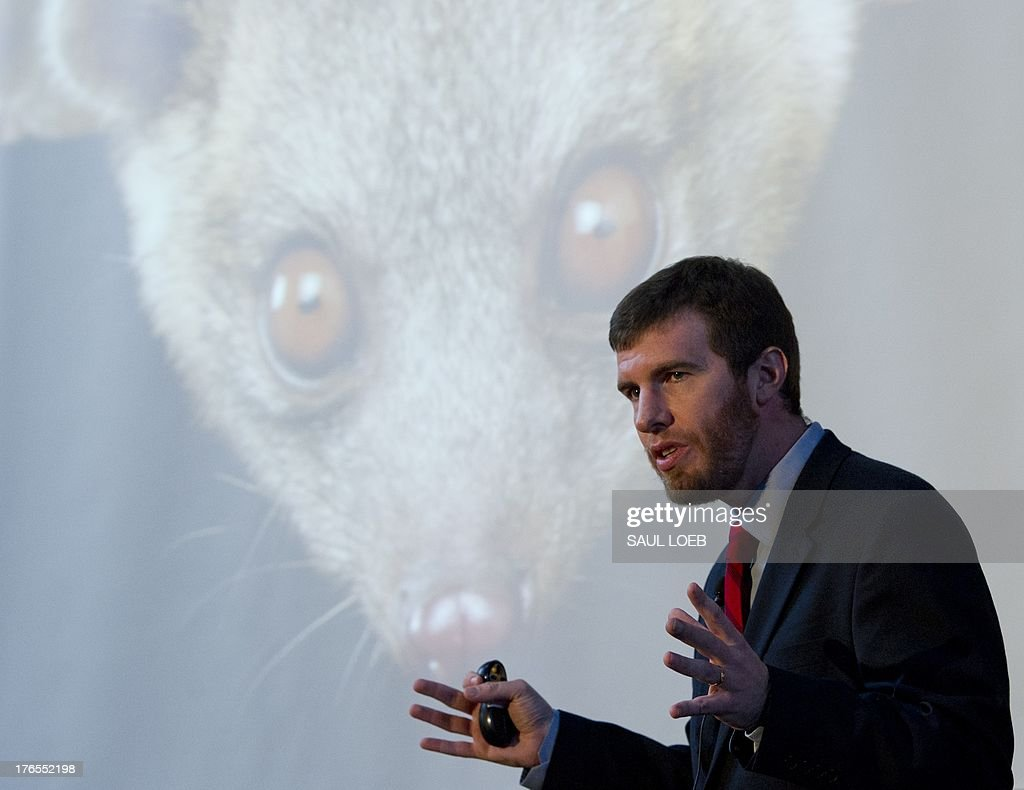 Kristofer Helgen, curator of mammals at the Smithsonian's National Museum of Natural History, discusses the olinguito, the first carnivore animal species to be discovered in the American continents in 35 years, during a press conference announcing the discovery at the Smithsonian Institution in Washington, DC, August 15, 2013. Helgen led a team in discovering the 2-pound (900 grams) mammal, the smallest member of the raccoon family, mainly eats fruit, insects and nectar, and can be found only in the cloud forests of the northern Andes Mountains in Ecuador and Columbia. AFP PHOTO / Saul LOEB