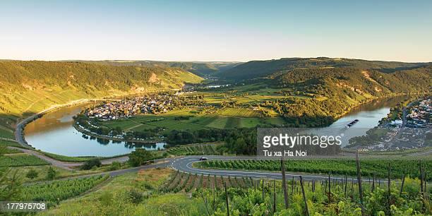 Krov's vineyards