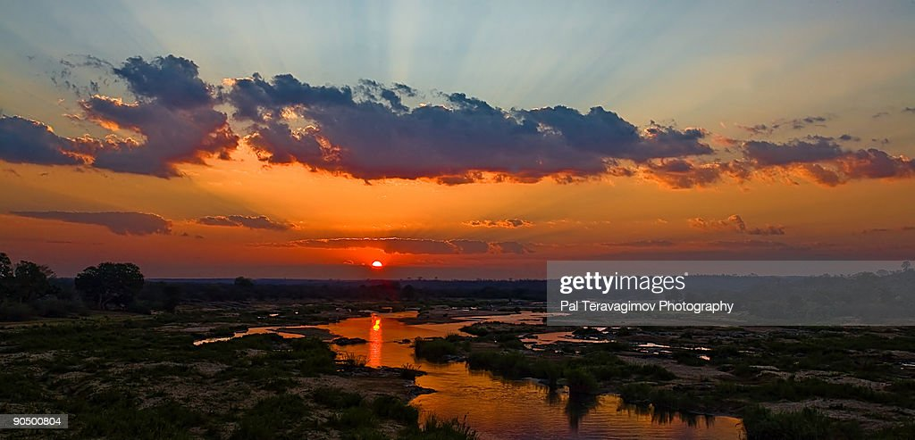 Kruger sunset : Stock Photo
